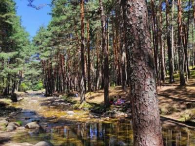 Pesquerías Reales-Valsaín,Río Eresma;toledo rutas refugio pingarron rutas por patones carros del